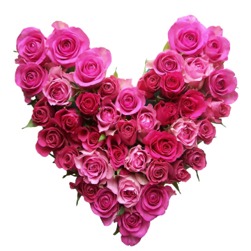 Heart made out of pink roses