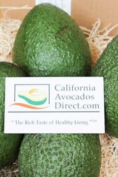 Avocado Recipes & Giveaway