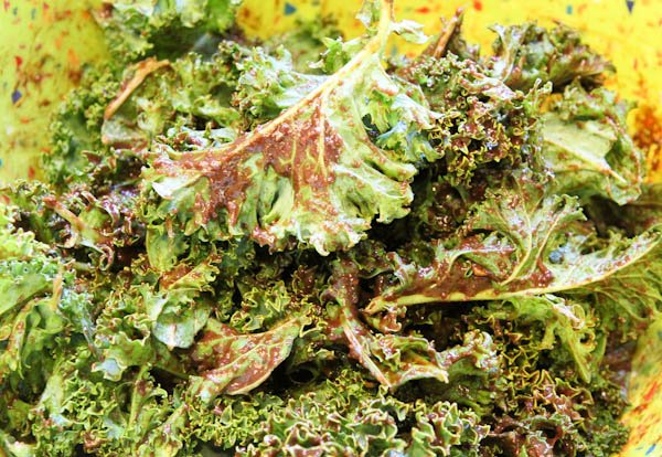 chocolate mixed with kale leaves
