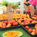 farmersmarket-4