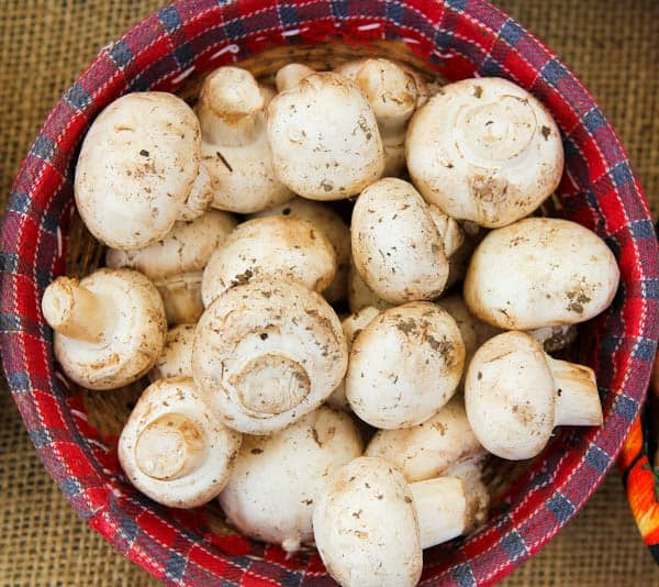 Mushrooms in plaid bowl