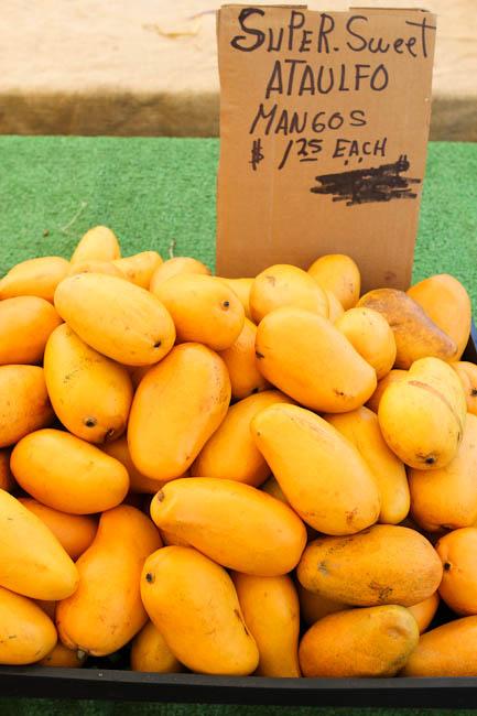 farmersmarket-6