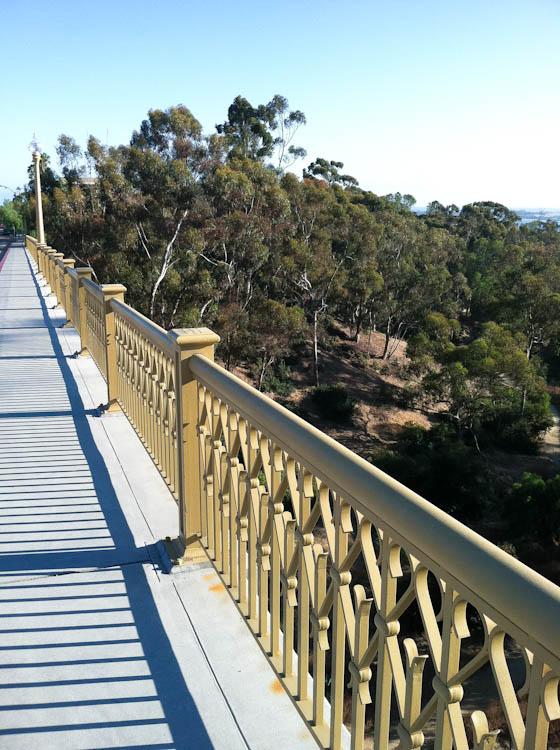 Bridge overlooking trees