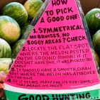 watermelontips