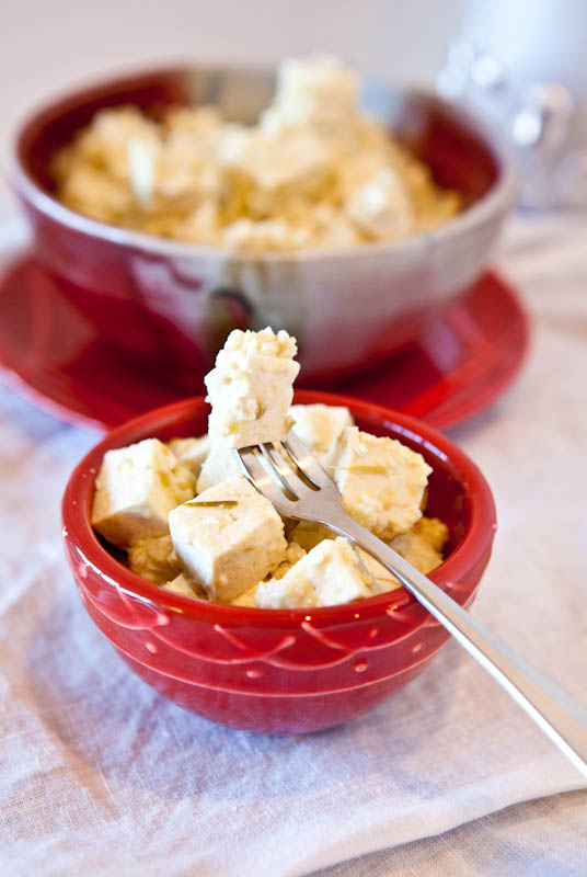 Microwave Pepperjack Tofu with Salsa