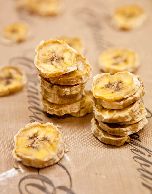 Dehydrated Banana Rounds