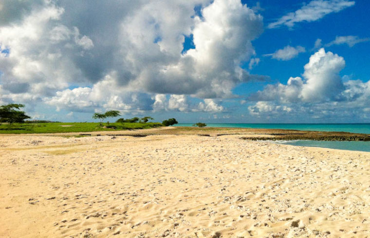 Sandy shores and landscape