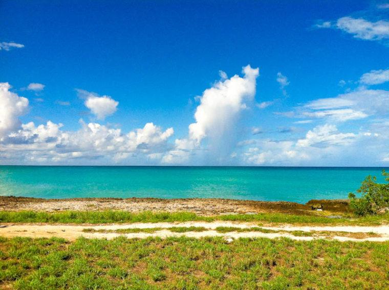 Landscape overlooking the ocean