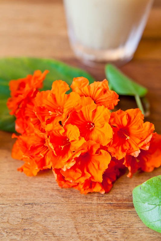 Orange flowers on table