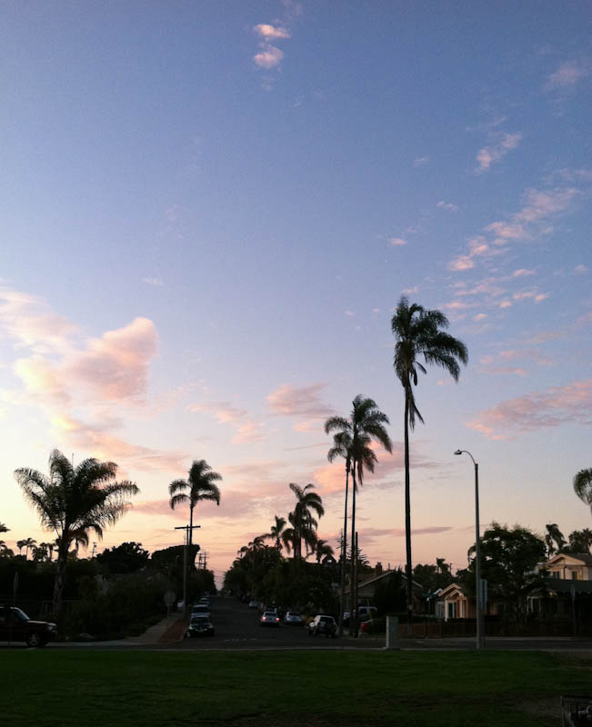 Sunset with clouds and palm trees