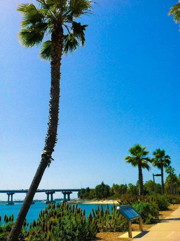 Coronado Island path overlooking bridge and ocean