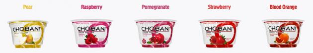 Choboni Yogurts