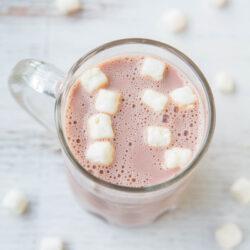 skinnyhotchocolate-26