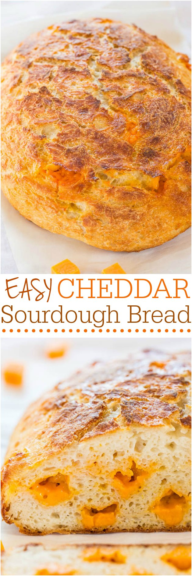 Homemade Sourdough Cheese Bread — No starter required and so easy! It tastes like it's from a fancy bakery! Who can resist homemade cheesy bread?!