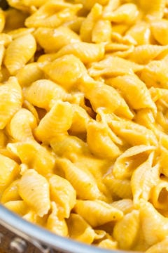 Easy 30-Minute Stovetop Pumpkin Macaroni and Cheese