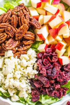 Cranberry, Apple, and Blue Cheese Salad with Cranberry-Apple Cider Dressing