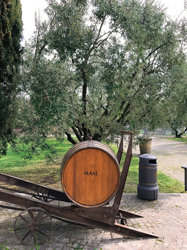 Masi Winery, Italy