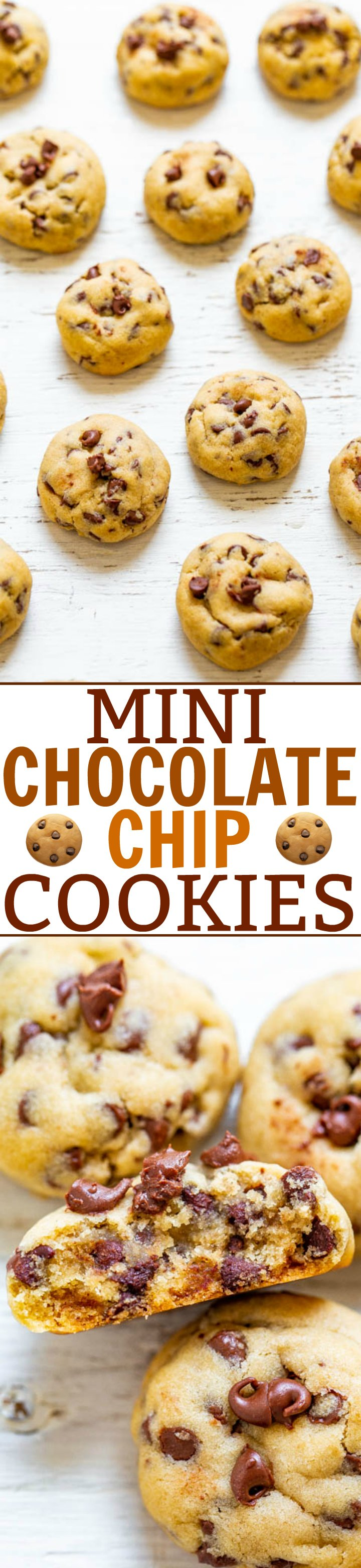 Mini Chocolate Chip Cookies – Soft, chewy, adorable little MINI cookies that are a hit with everyone!! Fast and easy! Bet you can't eat just one!!