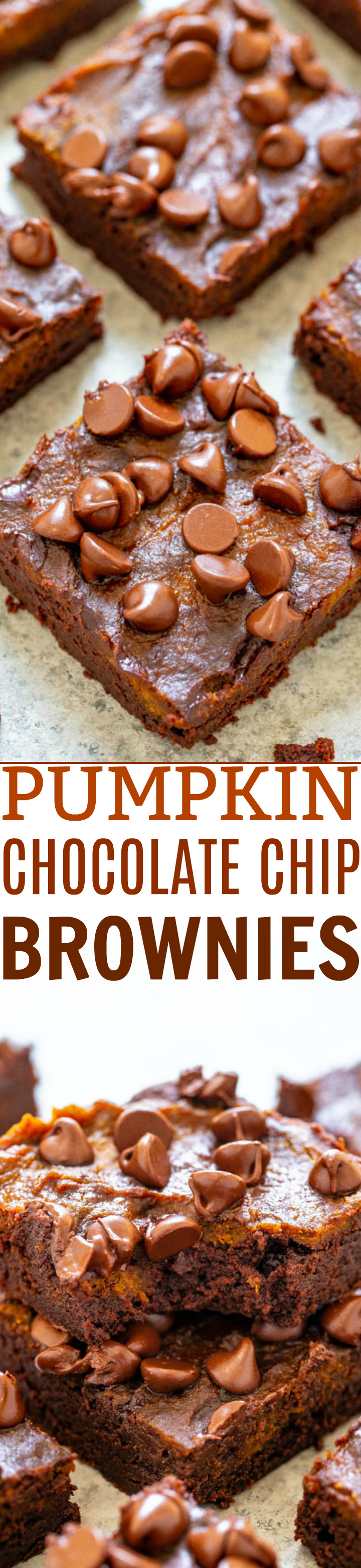 Pumpkin Chocolate Chip Brownies - Rich, fudgy brownies topped with pumpkin and chocolate chips!! An EASY, no mixer brownie recipe that's FASTER than using a boxed mix! Bring on pumpkin spice season!!