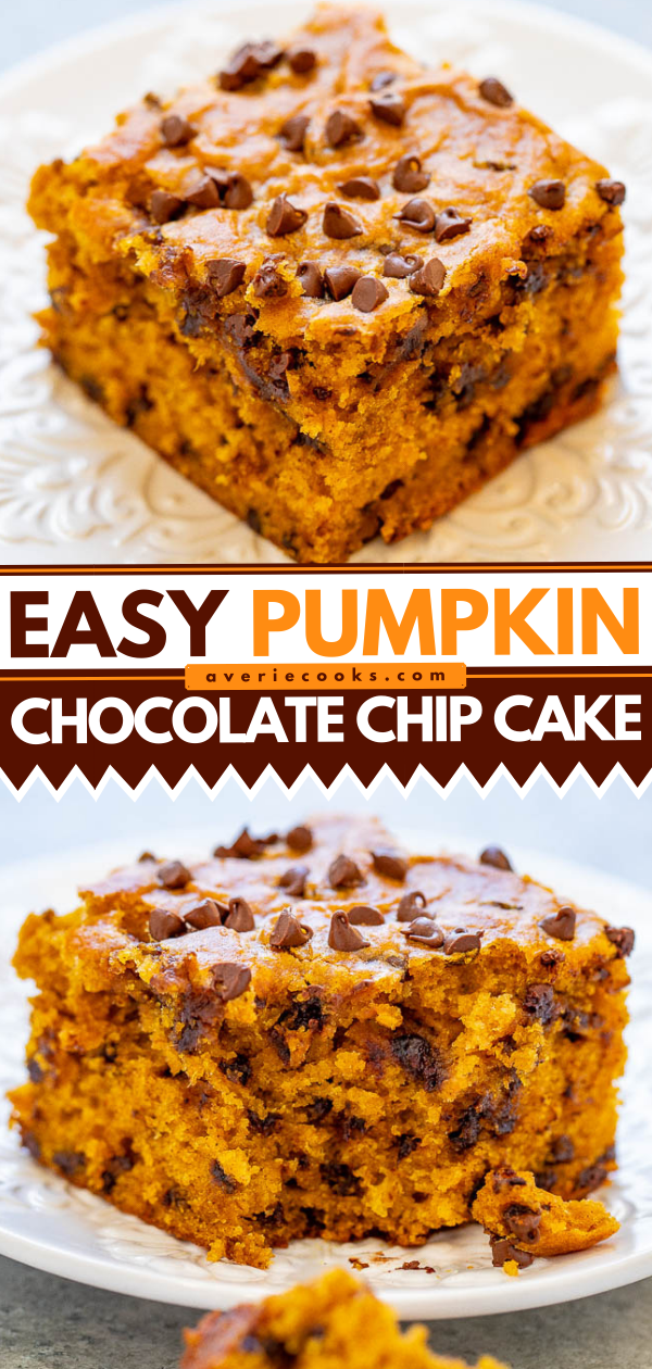 Pumpkin Chocolate Chip Cake — This soft and moist pumpkin cake is loaded with chocolate in every bite!! An EASY one-bowl fall dessert that's perfect for impromptu entertaining or anytime a pumpkin craving strikes!!
