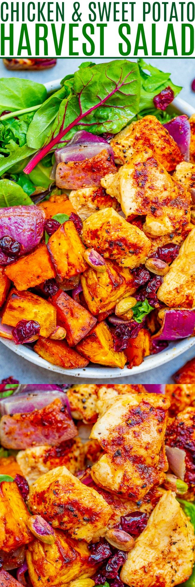 Roasted Chicken and Sweet Potato Harvest Salad - Fall-inspired ingredients including tender sweet potatoes, juicy chicken, red onions, cranberries, and pumpkin seeds topped with a honey apple cider vinaigrette!!  A HEARTY and COMFORTING salad that makes a big batch perfect for planned leftovers!!