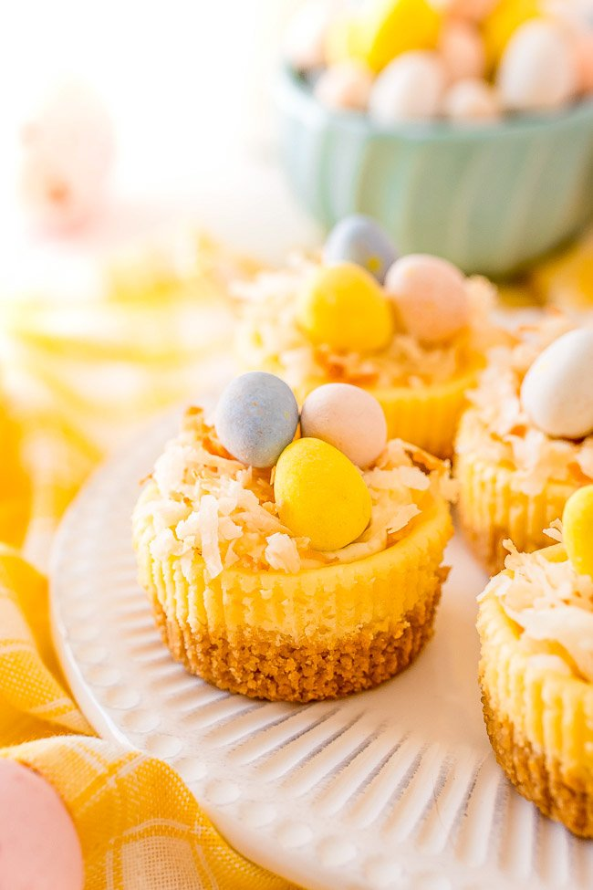 Mini Easter Cheesecakes - These cute little cheesecakes are perfect for Easter! Creamy cheesecake filling sits atop a shortbread crust and is topped with a cheesecake pudding whipped cream and coconut!