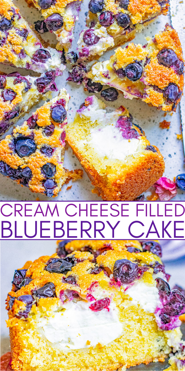 Cream Cheese-Filled Blueberry Cake - A light and tender blueberry sponge cake stuffed with tangy-sweet cream cheese and bursting with juicy blueberries in every bite! An EASY, no-mixer cake recipe that's sure to be a family FAVORITE!!